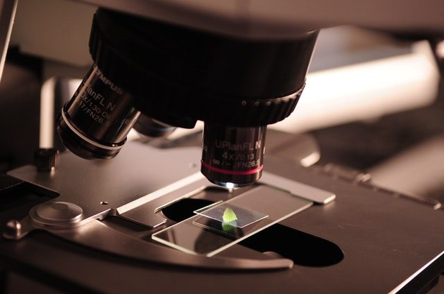 The Importance Of Forensic Science In Criminal Investigations And Justice
